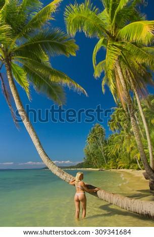 Woman In Bikini Hot Blonde  - stock photo