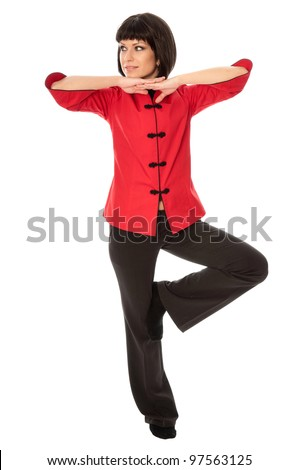 woman in Chinese dress standing in martial Arts pose - stock photo