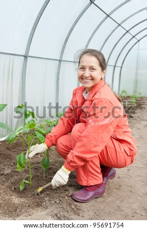 Woman in orange tracksuit is in hothouse - stock photo