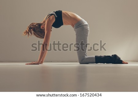 cat pose yoga stock photos images  pictures  shutterstock