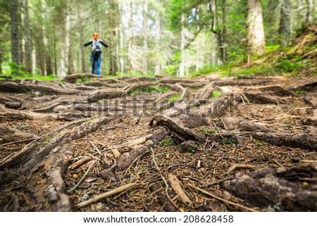 Woman is walking in the forest - stock photo