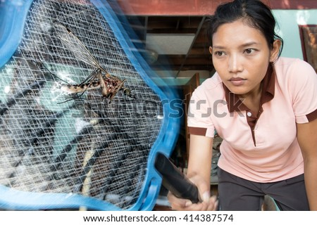 Woman kills flying mosquito with an electric flyswatter.Asian girl kill large flying mosquito.Killing dangerous mosquitoes in the tropics.Extermination dangerous insects at home.Fight with mosquitoes. - stock photo
