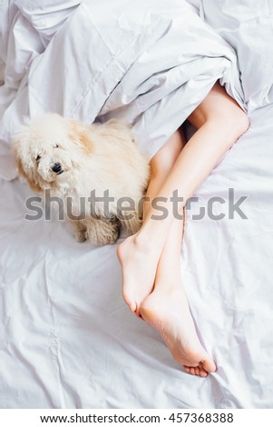 Woman legs and dog in white bed sheets - stock photo