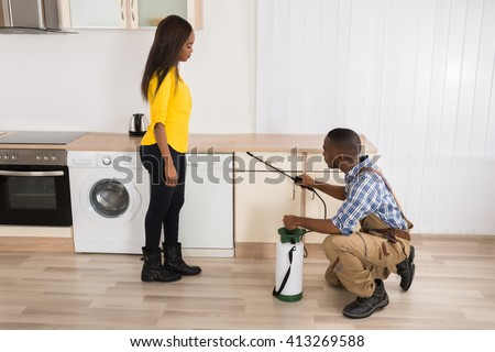 Woman Looking At Male Worker Spraying Pesticides On Wooden Drawer - stock photo