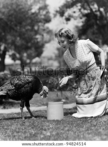 Woman luring turkey to hatchet with corn - stock photo