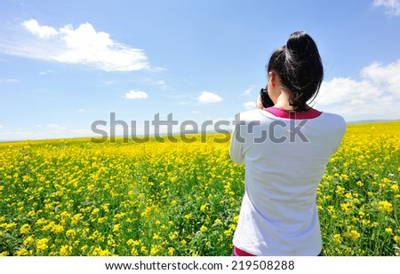 woman photographer taking photo in cole flower field - stock photo