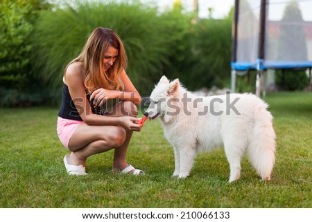 Woman playing with her samoyed dog on the grass