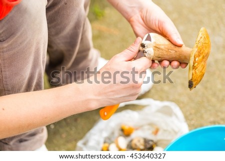 Woman preparing forest mushrooms for drying. Slicing mushrooms for drying
