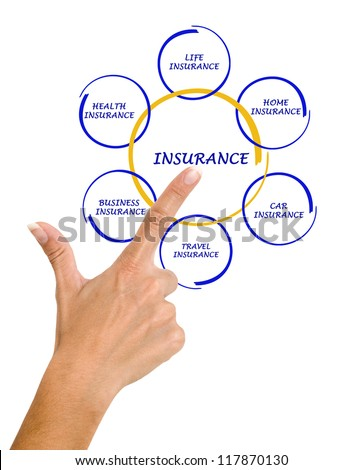 woman presenting insurance diagram - stock photo