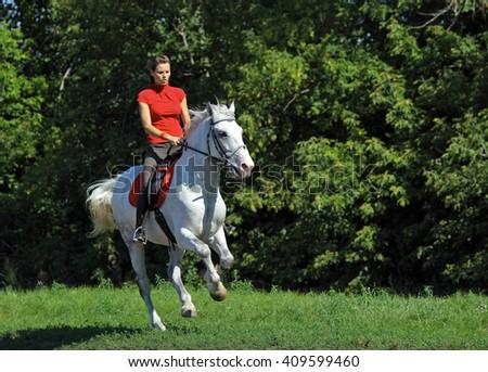 Woman riding horseback through forest  - stock photo