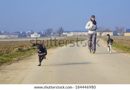 woman running with dogs - stock photo