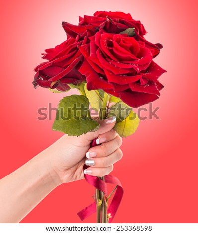 Woman's hand holding bouquet of three red roses, isolated on red gradient background. - stock photo