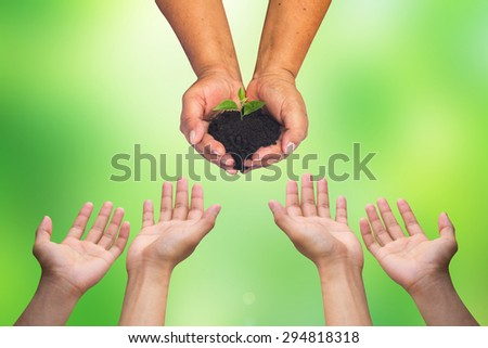 woman's hand holding little growing plant with hands receiving on blurred green nature backgrounds.safe the world concept helping hand concept. - stock photo