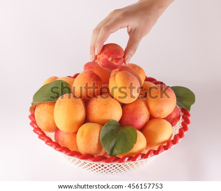 Woman's hand take one apricot from the bowl with a pile of ripe and fresh apricots