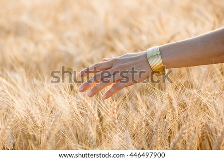Woman's hand touch wheat ears at sunset, Harvest concept - stock photo