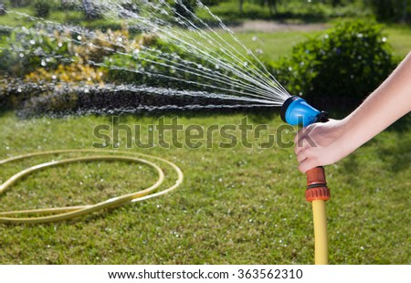 Woman's hand with garden hose watering plants, gardening concept - stock photo