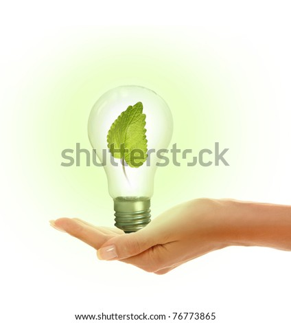 woman's hands holding shiny lamp with green leaf