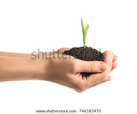 Woman's hands holding soil with green sprout on white background