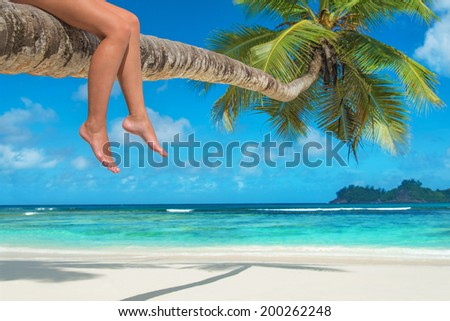 Woman's legs on a palm tree at tropical beach against ocean - stock photo
