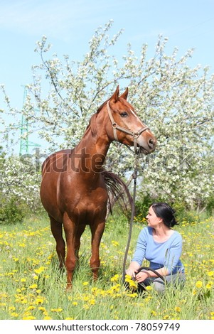 Woman sitting on the dandelion field and looking at the brown horse - stock photo