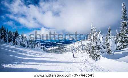 Woman skier enjoying the scenery and snow covered trees in the high alpine ski area at Sun Peaks in the Shuswap Highlands of central British Columbia, Canada