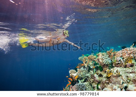 Woman snorkel diver pointing to beautiful corals and fishes underwater - stock photo