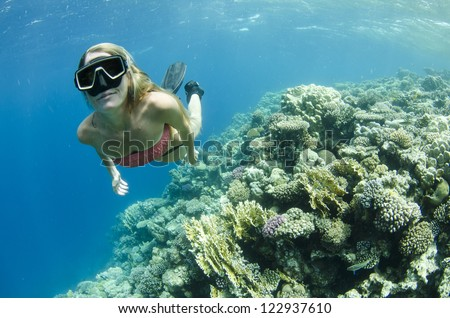 Woman snorkeling and free diving On a coral reef - stock photo