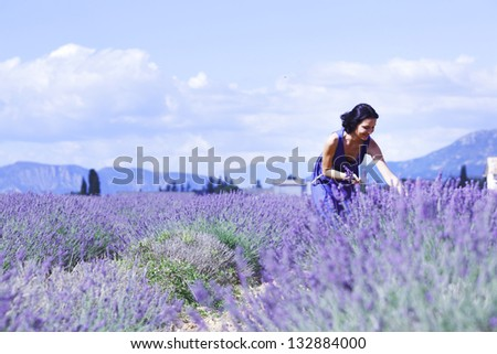 Woman standing on a lavender field - stock photo