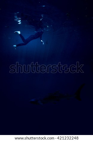 woman swimming at night with shark below, shipwreck concept
