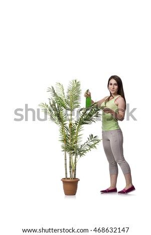 Woman taking care of plant isolated on white