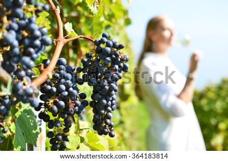 Woman tasting wine. Lavaux region, Switzerland - stock photo