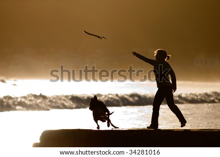woman throwing stick for dog