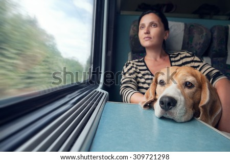 Woman traveling with dog in the train wagon - stock photo