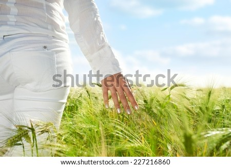 Woman walking through the wheat field. - stock photo