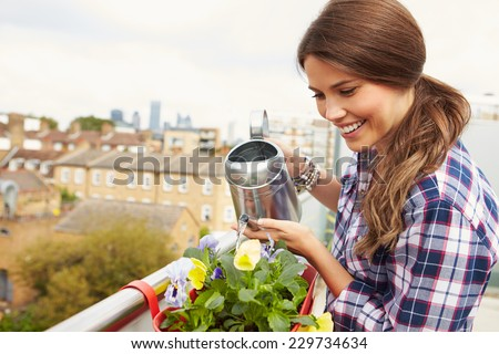 Woman Watering Plant In Container On Rooftop Garden - stock photo