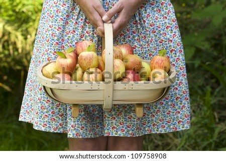 woman wearing a dress with a trug of fresh apples