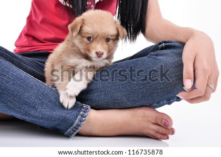 Woman with a little puppy, isolated on white background - stock photo