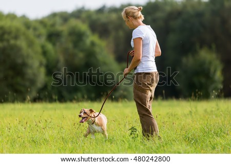 woman with a Podenco Mix at the leash walking on the meadow