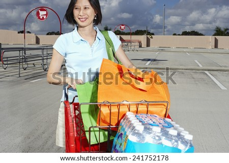 Woman with a Shopping Cart - stock photo