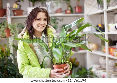 Woman with aspidistra flower in a flower shop - stock photo