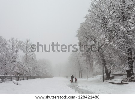 woman with baby and dog for walk in winter city park - stock photo