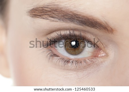 Woman with beautiful eyebrow and brown eye in a cropped image