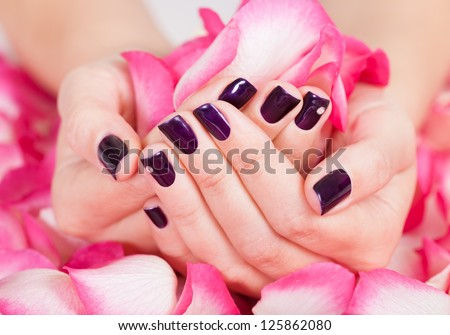 Woman with beautiful manicured fashion nails holding a handful of pink rose petals - stock photo