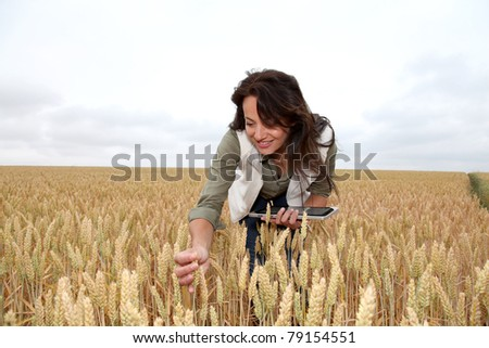 Woman with electronic tablet analysing wheat ears - stock photo