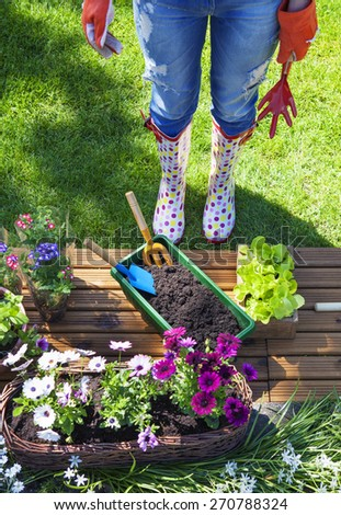 Woman with gardening tools, flowers and pots - stock photo