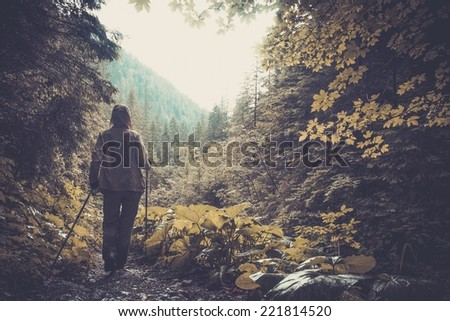 Woman with hiking equipment walking in mountain forest - stock photo