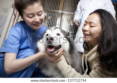 Woman with pet dog and veterinarian - stock photo