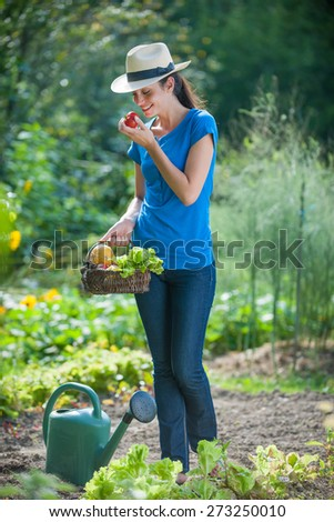 Woman with vegetable basket eating a fresh picked tomato - stock photo