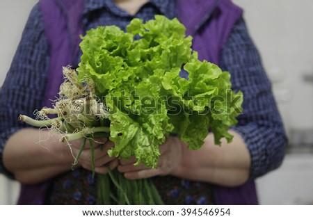 Women farmer holding fresh vegetables - stock photo