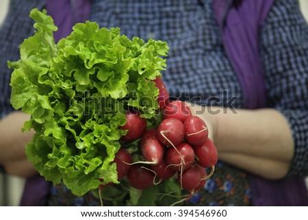 women farmer holding lettuce and red radish - stock photo